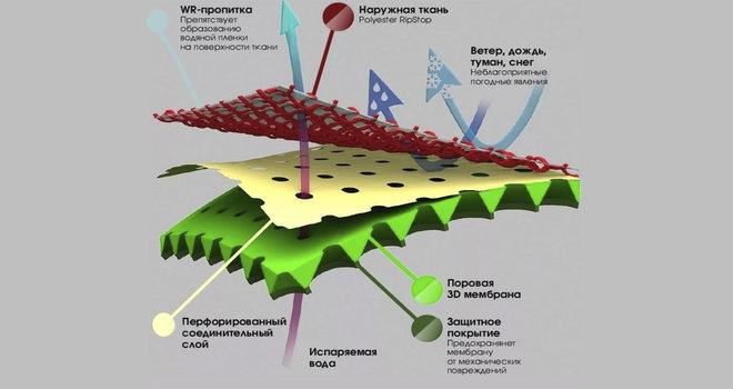 Материал мембрана в разрезе